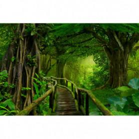 Passage dans la Jungle