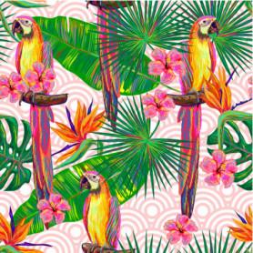 Jungle Perroquet