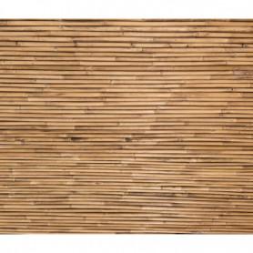 Bambou Texture