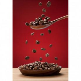 Cuillère & Grains de Café