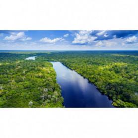 Fleuve Amazonien